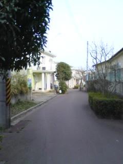 ■2010/3/29(月) 遊歩道 / 0:25pm