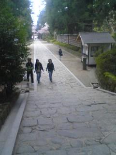 ■2010/5/2(日) 朝の散歩 / 10:00am