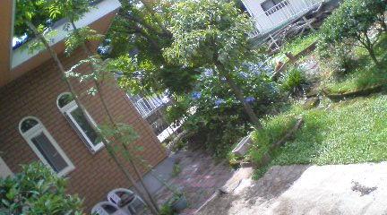 ■2010/7/19(月) 避暑にならない / 10:10am