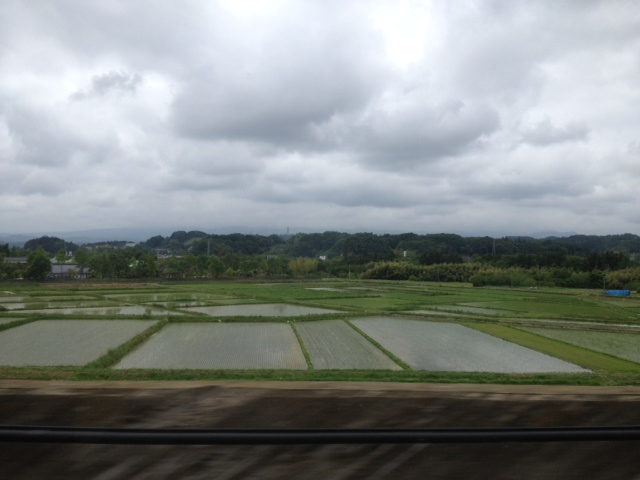 ■2013/06/2(日) 福島の二本松 / 0:00pm